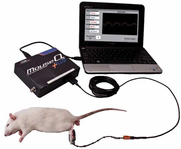 MouseOx Plus starr life sciences